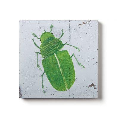 Urban Fragments – BUG no.1 – 40x40cm – Lucie Albon