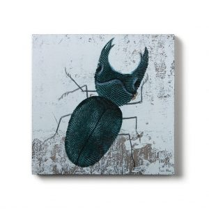 Urban Fragments – BUG no.3 – 40x40cm – Lucie Albon