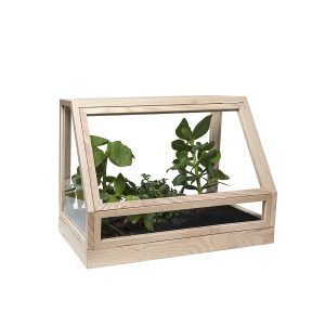 DESIGN HOUSE STOCKHOLM - GREENHOUSE MINI - Plantenkas Broeikas naturel essenhout (1)