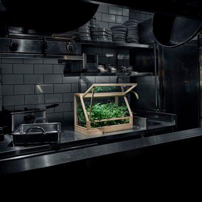 DESIGN HOUSE STOCKHOLM - GREENHOUSE MINI - Plantenkas Broeikas naturel essenhout (3)