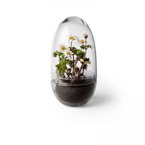 Design House Stockholm - GROW Large plantenkasje, kweekkas, kweekstolp (2376-0000)