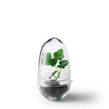 Design House Stockholm - GROW Small plantenkasje, kweekkas, kweekstolp (2043-0000)