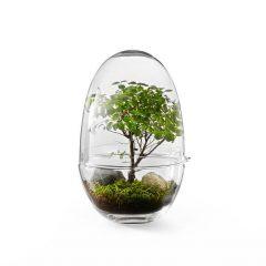 Design House Stockholm - GROW XLarge (2419-0000) 2